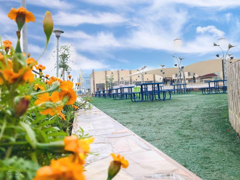 الإعلان عن نتائج مسابقة جامعة المثنى في مكافحة الجائحة
