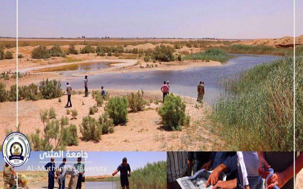 جامعة المثنى تستضيف خبراء من مركز علوم البحار بجامعة البصرة