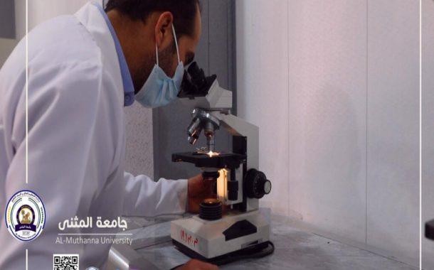جامعة المثنى في المرتبة ١٨ بين الجامعات العراقية
